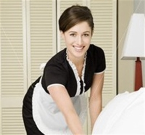 Recession Resistant Residential House Cleaning Business